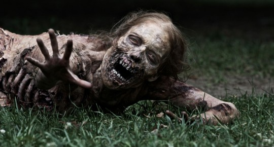The-Walking-Dead-TV-Series-Zombie-540x290