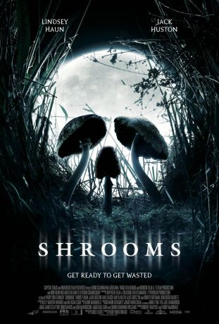 shrooms_xlg